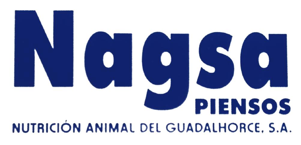 nagsa